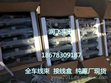 【中國重汽豪沃HOWO原廠駕駛室線束及底盤線束