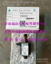 WG1034120181+006 重汽发动机尿素溶液泵/WG1034120181+006