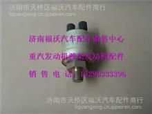 DZ9100580053 陕汽德龙油压传感器/DZ9100580053
