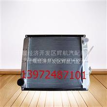 东风多利卡散热器1301010-C64001
