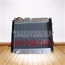 东风多利卡散热器总成1301010-BB04