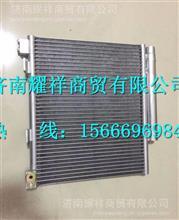 LG1613822103重汽豪沃HOWO轻卡冷凝器/LG1613822103
