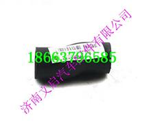 重汽D10发动机油气分离器取气软管/VG1246010100