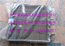 欧曼GTL前围外中央配电盒线束护罩/H4374050001A0