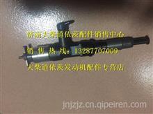 1112010-90D大柴道依茨发动机喷油器总成/1112010-90D