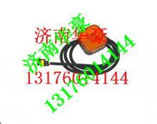 陕汽德龙奥龙重汽豪骏驾驶室转向灯边灯/81.25260.6101
