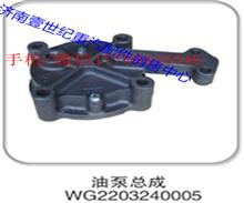 油泵总成,产地山东济南/WG2203240005,