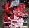 厂家直销大柴498系列油刹自然吸气柴油发动机总成/98609797