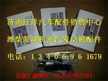 潍柴WP6电喷发动机喷油泵流量计量单元/612600081583