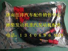 潍柴WP7燃气高压线610800190392/610800190392
