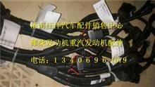 潍柴WP12国四发动机线束总成612640080061/612640080061