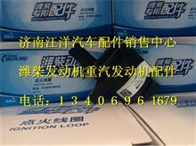 潍柴点火线圈612600190245/612600190245