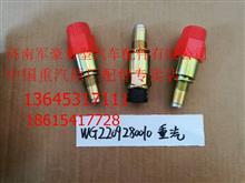 WG2209280010重汽豪沃程表传感器电磁式车速传感器/WG2209280010