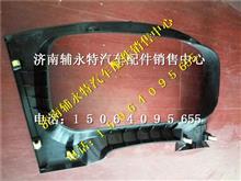 重汽豪沃T5G仪表护罩总成WG1664160530/WG1664160530