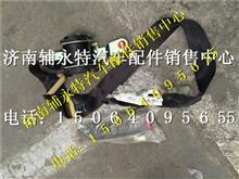 重汽新斯太尔副司机侧安全带总成/WG1682560002