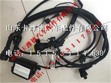 潍柴气体机ECU线束 612600191127/612600191127