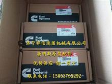 康明斯空压机 减震皮带轮 QSM水泵4972853/康明斯空压机减震皮带轮
