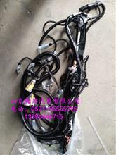 曼发动机线束812W25458-6745 T7H发动机线束厂家/原厂德国汽车线束标准13396446715