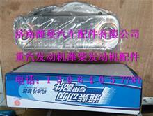 潍柴WD615发动机机油冷却器芯总成/61500010334
