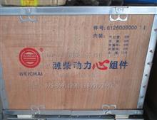 潍柴发动机四配套组件/612600900074