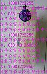 重汽豪沃轻卡膨胀水箱 豪沃HOWO轻卡配件  豪沃轻卡配件/LG9704530203