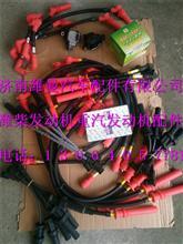 潍柴WP13天然气发动机高压导线612600190655/612600190655