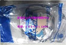 潍柴WP10发动机修理包612600900162/612600900162