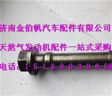 重汽曼MC11发动机飞轮螺栓/200V90020-0419