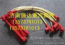 重汽/潍柴/玉柴天然气LNG发动机潍柴天然气发动机WP7高压导线/610800190119