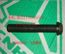 重汽发动机飞轮螺栓/VG1246020010