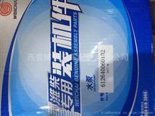 潍柴发动机水泵装载机国4用/612640060102