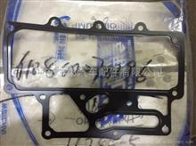 潍柴WP7机油冷却器垫/610800070196