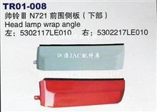 江淮帅铃III N721 左前围侧板(下部)/5302117LE010