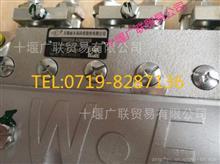 供应 康 明斯发动机 配件6BTAA高压油泵C3960558