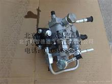 福田戴姆勒欧曼5318651燃油泵喷油泵/5318651