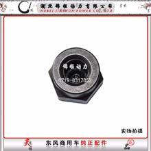 东风雷诺发动机摇臂螺母/发动机制动螺母/D5010359743