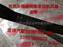东风天锦康明斯发动机曲轴皮带/C3911588/8PK1411