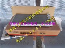 WG1664820053重汽豪沃A7暖风散热器总成/WG1664820053
