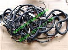 TH401ZG-3724280C柳汽霸龍507車架電線束總成