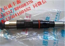 重汽豪沃欧三共轨喷油器 095000-6700/095000-6700