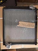 东风多利卡、凯普特、福瑞卡 发动机散热器水箱总成/1301010-C93617