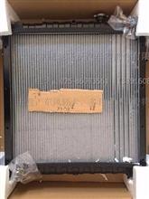 东风多利卡、凯普特、福瑞卡 发动机散热器水箱总成/1301010-Q39421