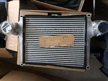东风多利卡、凯普特、福瑞卡 发动机中冷器总成/1119010-E38501