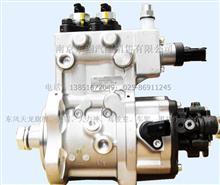 雷诺高压油泵/D5010222523