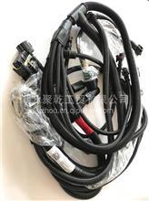 东风雷诺 发动机线束总成D5010222527/东风雷诺 发动机线束总成D5010222527