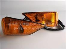 重汽豪沃08款转向灯 斜角 叶子板边灯/WG9725720018