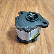 玉柴3407-00055转向齿轮泵QC18/13-YC08Z转向油泵/QC18/13YC087
