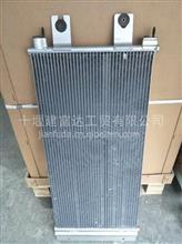 东风天龙旗舰冷凝器芯子/8105010-6100   天龙旗舰冷凝器芯子