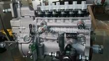 潍柴锡柴336马力高压油泵无锡威孚/612601080376