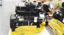 全新原厂康明斯6cta8.3-215柴油发动机总成/6CTA8.3-C215